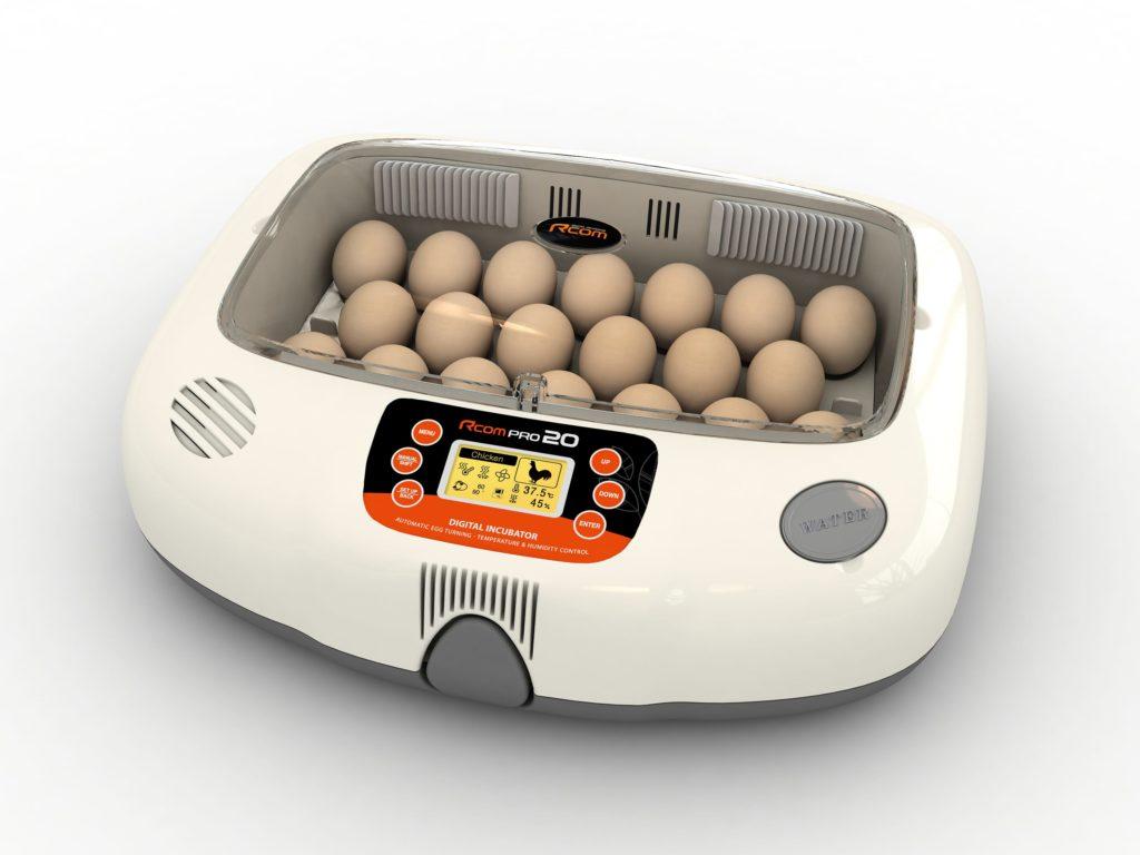 Инкубатор для выращивания цыплят