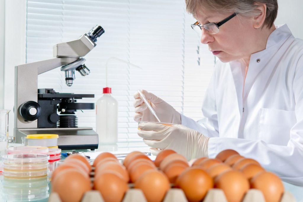 Определить заражено яйцо или нет можно в лаборатории