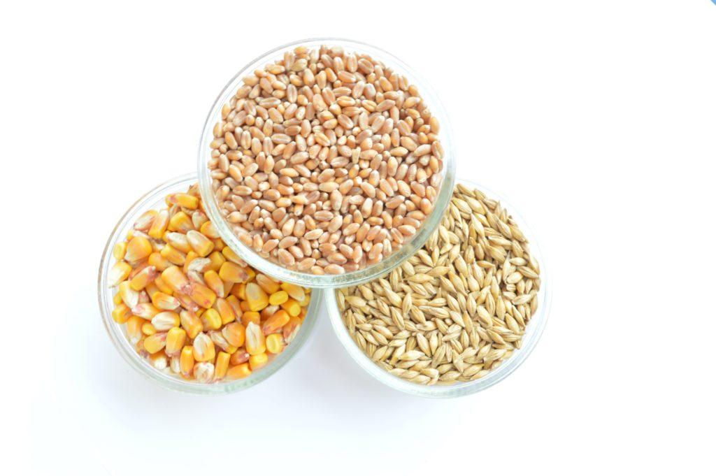 Кукуруза, ячмень, пшеница