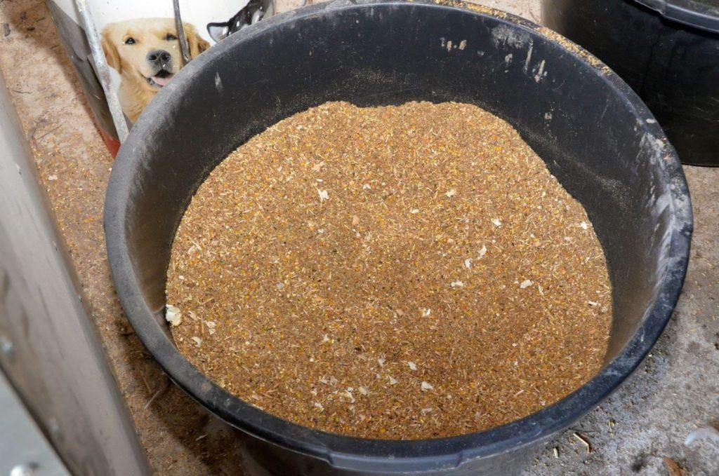 Приготовление корма в домашних условиях