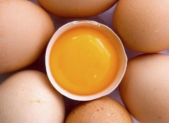 Кровь внутри и на скорлупе яиц