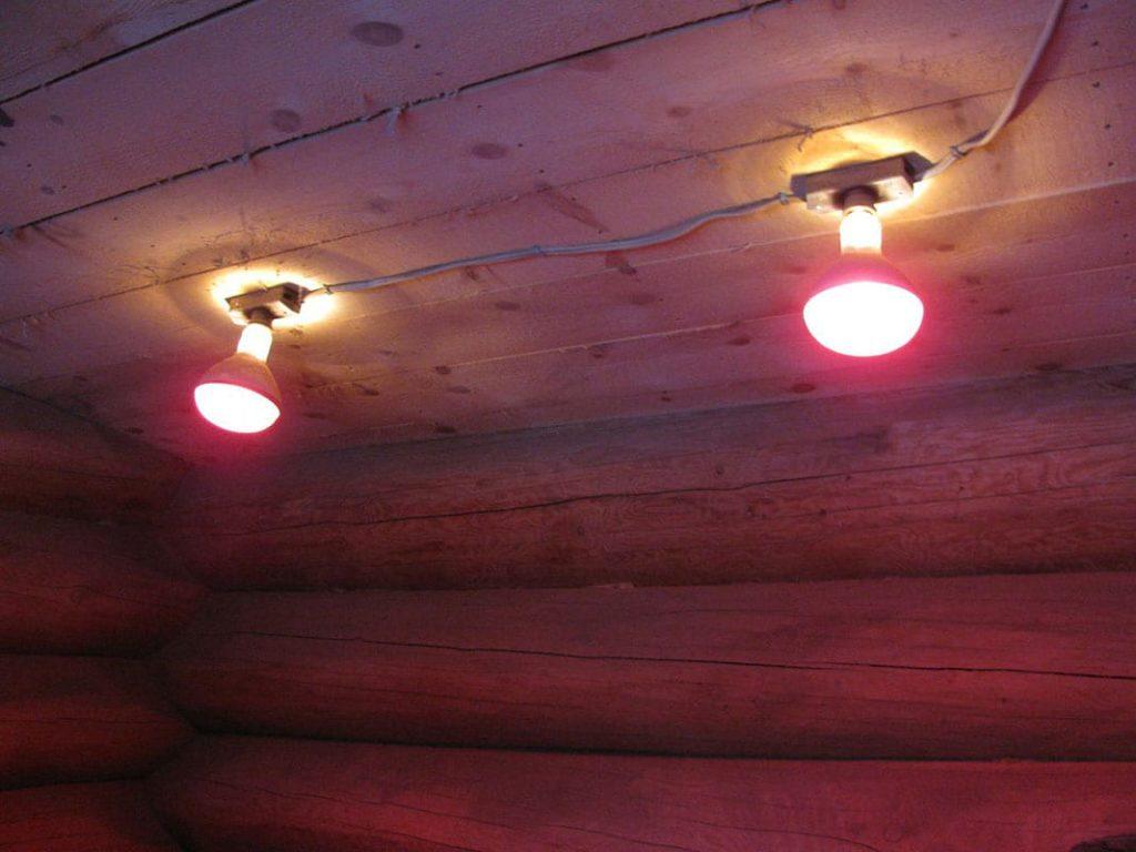 Красные лампы для помещения с птицами