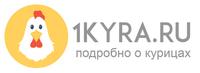 1КУРА.ру
