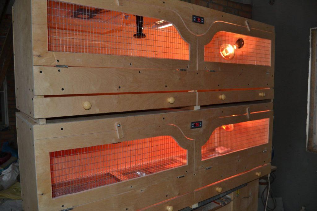 Инфракрасные лампы для обогрева цыплят
