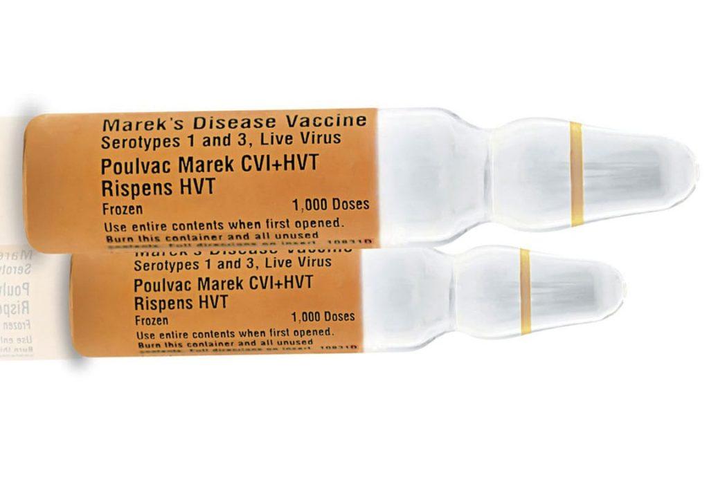 Вакцина Rispens+HV