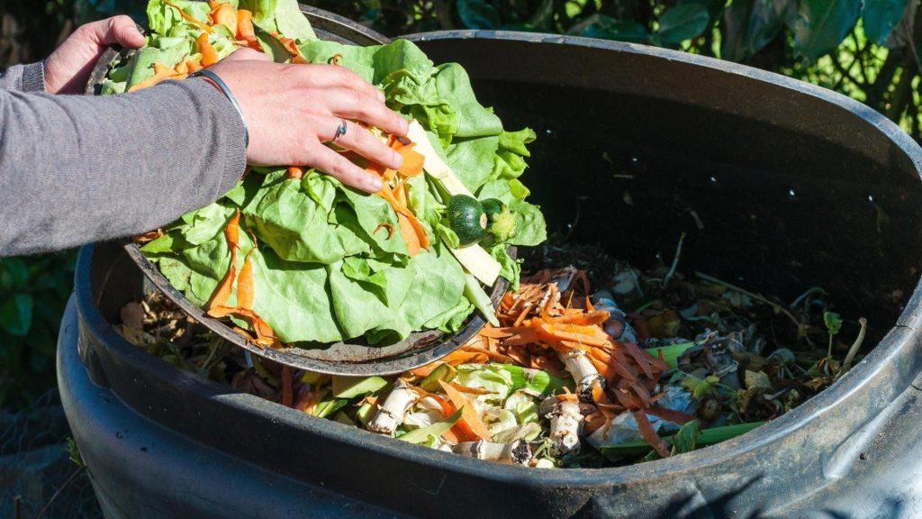 Овощные отходы