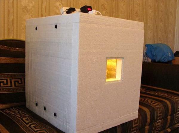 инкубатор из пенопласта