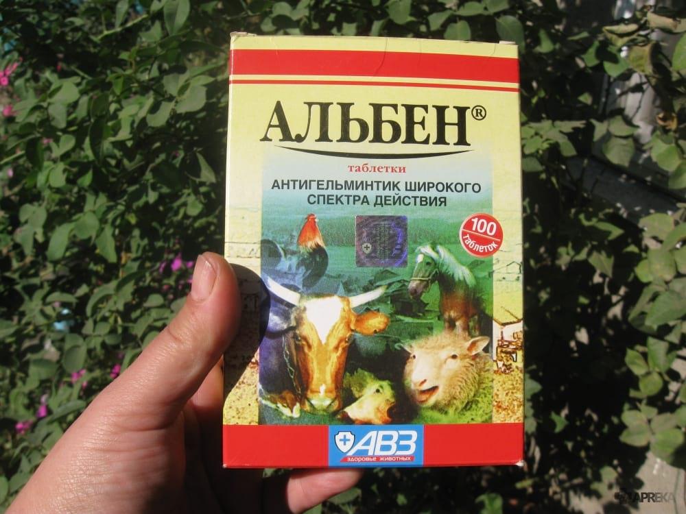 альбен