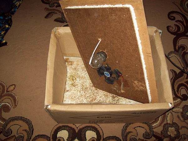 инкубатор из картона